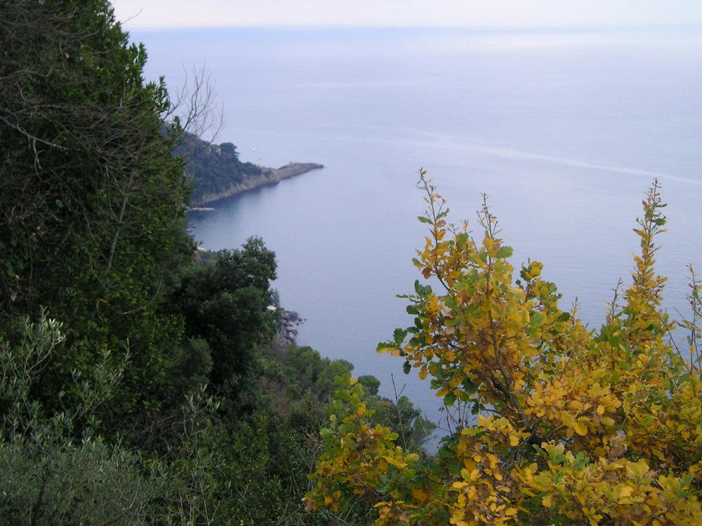 Lo specchio di mare nel quale si verificò il naufragio della Santo Spirito, visto dall'alto
